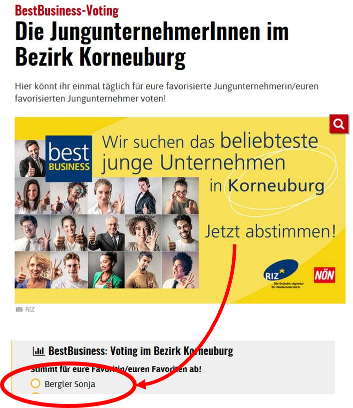 RIZ Voting 2017_12