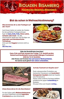 Newsletter Screenshot Dezember 2018 209x325