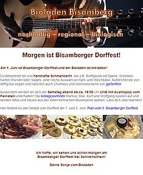 Newsletter Screenshot Dorffest 2019 209x256